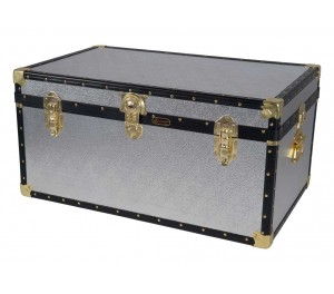 "33"" Storer Trunk - Silver Alloy"